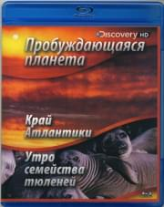 Discovery: Пробуждающаяся планета. Край Атлантики / Утро семейства тюленей (Blu-ray)