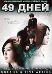 49 дней (20 серий) (4 DVD)