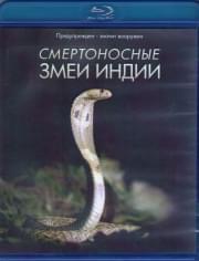 BBC Живой мир Смертоносные змеи Индии (Blu-ray)